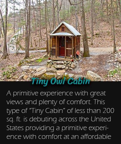 Tiny_Owl_Cabin